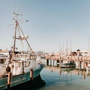 Fishing boats in a marina