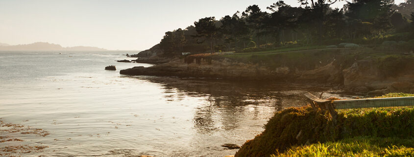 Photograph of a coastline and grass at sunset