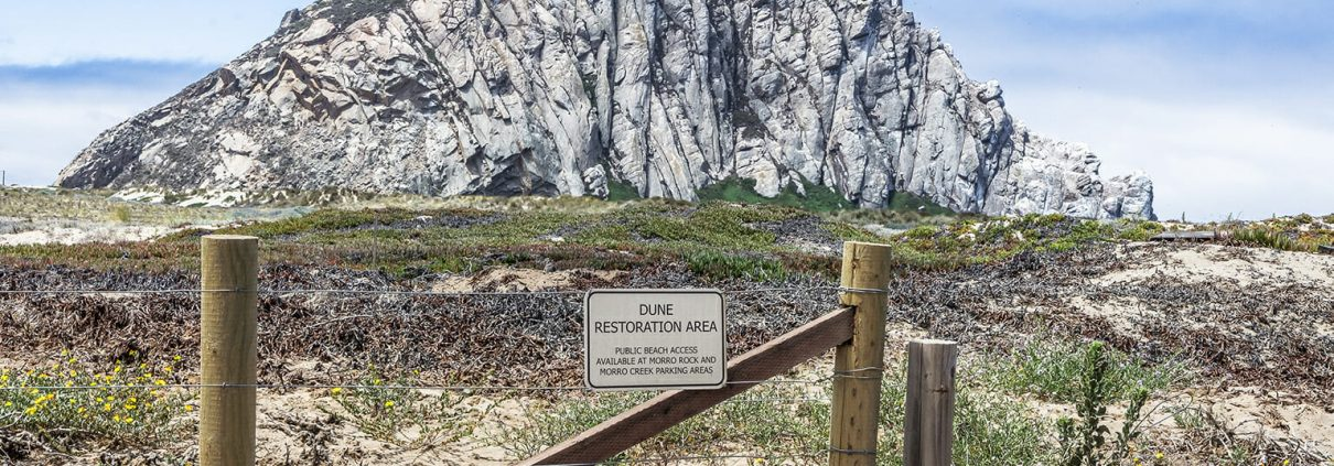 """Photo of a sign saying """"Dune Restoration Area"""" at Morro Bay. Morro Rock stands clearly against a blue sky behind the fence and low dunes"""